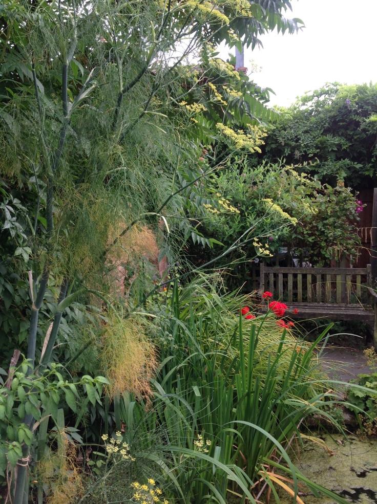 Greensummergarden